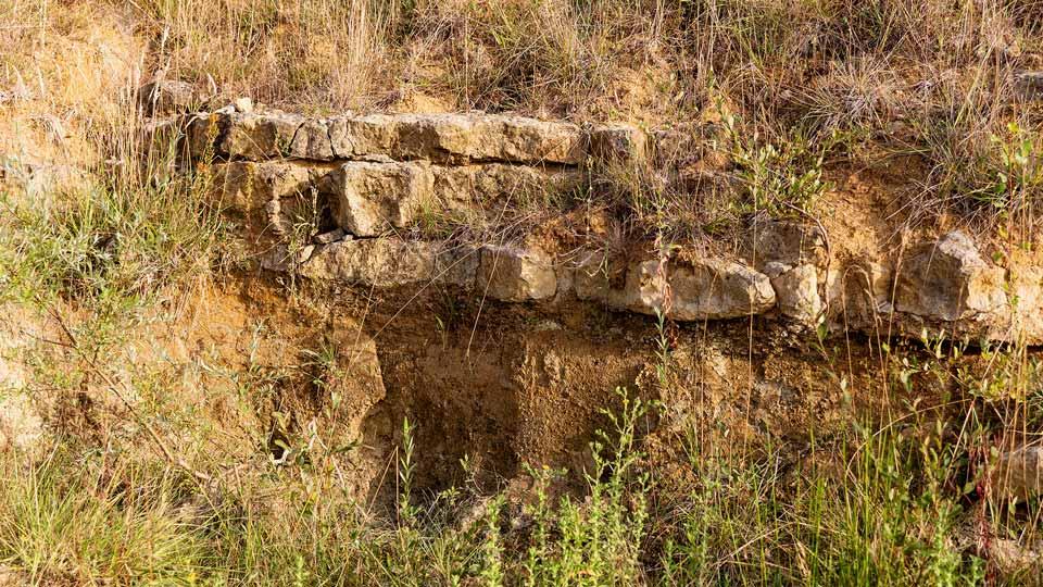 Soil of a vineyard